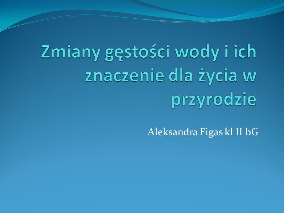 Aleksandra Figas kl II bG