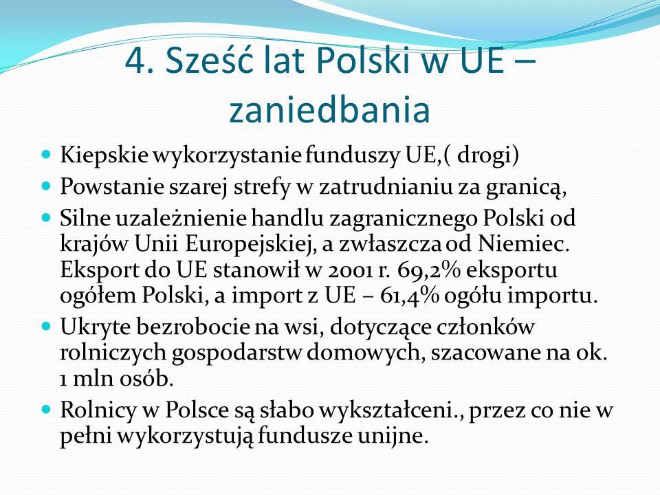 4. Sześć lat Polski w UE – zaniedbania Kiepskie wykorzystanie funduszy UE,( drogi) Powstanie szarej strefy w zatrudnianiu za granicą, Silne uzależnien