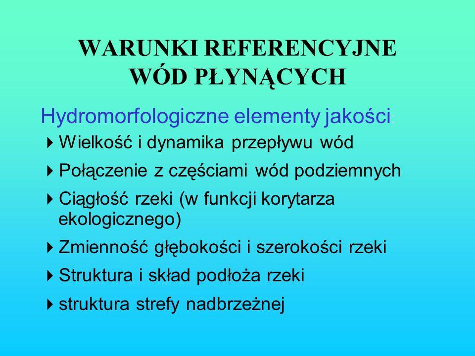 WARUNKI REFERENCYJNE WÓD PŁYNĄCYCH Hydromorfologiczne elementy jakości : Wielkość i dynamika przepływu wód Połączenie z częściami wód podziemnych Ciąg