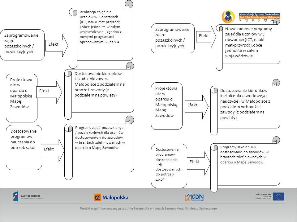 Zaprogramowanie zajęć pozaszkolnych / pozalekcyjnych Projektowa nie w oparciu o Małopolską Mapę Zawodów Dostosowanie programów nauczania do potrzeb szkół Realizacja zajęć dla uczniów w 3 obszarach (ICT, nauki mat-przyrod; j.obce jednolite w całym województwie, zgodna z nowymi programami opracowanymi w dz.9.4 Dostosowanie kierunków kształcenia zaw.