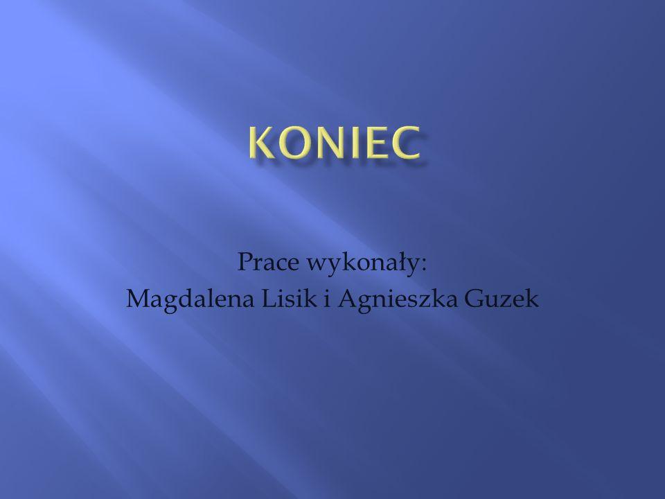 Prace wykonały: Magdalena Lisik i Agnieszka Guzek