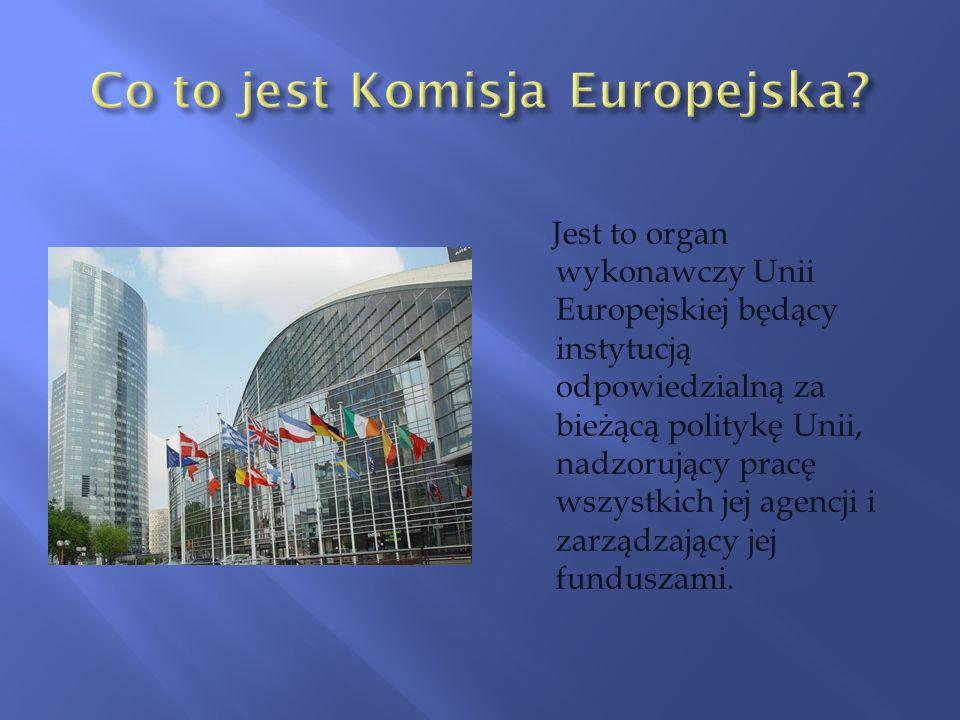 Jest to organ wykonawczy Unii Europejskiej będący instytucją odpowiedzialną za bieżącą politykę Unii, nadzorujący pracę wszystkich jej agencji i zarzą