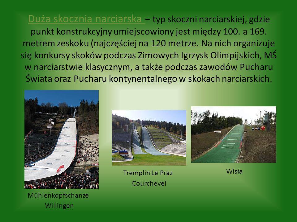 Duża skocznia narciarska – typ skoczni narciarskiej, gdzie punkt konstrukcyjny umiejscowiony jest między 100. a 169. metrem zeskoku (najczęściej na 12