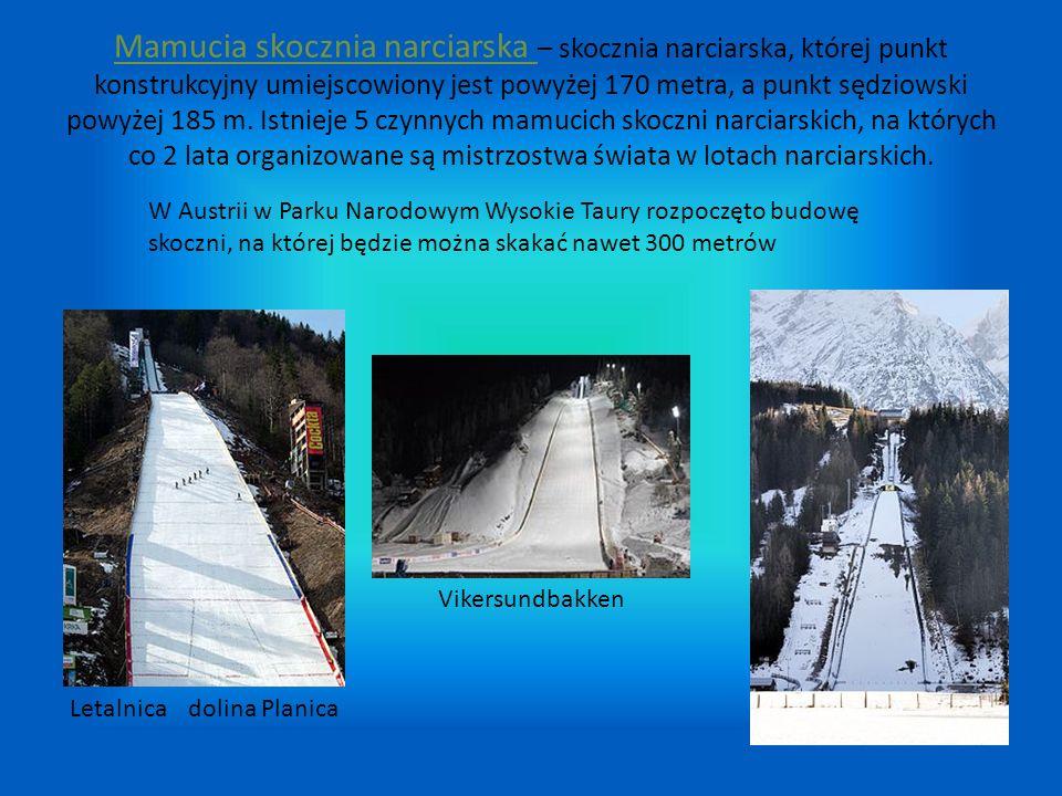 Mamucia skocznia narciarska – skocznia narciarska, której punkt konstrukcyjny umiejscowiony jest powyżej 170 metra, a punkt sędziowski powyżej 185 m.