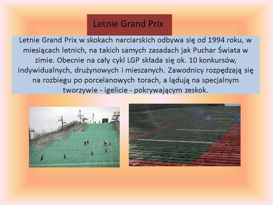 Letnie Grand Prix w skokach narciarskich odbywa się od 1994 roku, w miesiącach letnich, na takich samych zasadach jak Puchar Świata w zimie. Obecnie n