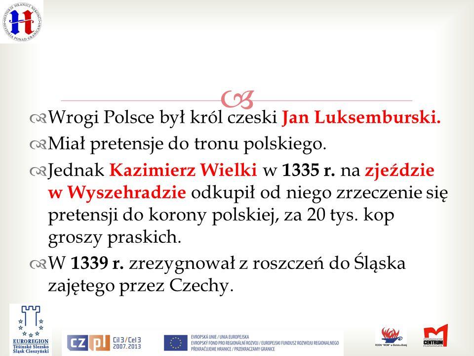 Wrogi Polsce był król czeski Jan Luksemburski.Miał pretensje do tronu polskiego.