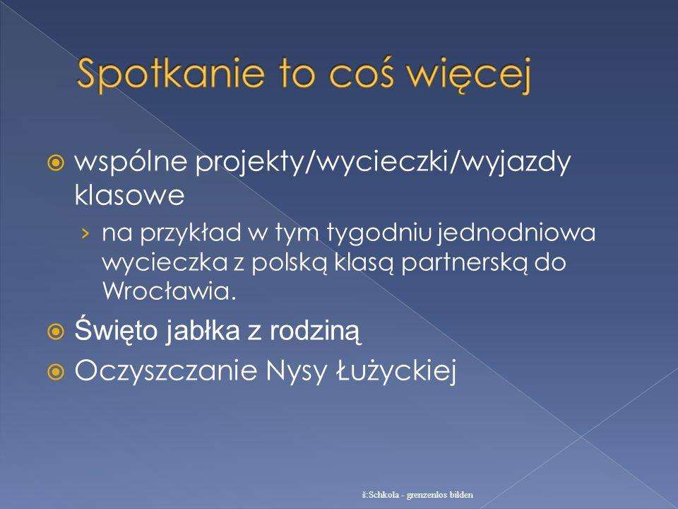 wspólne projekty/wycieczki/wyjazdy klasowe na przykład w tym tygodniu jednodniowa wycieczka z polską klasą partnerską do Wrocławia. Święto jabłka z ro