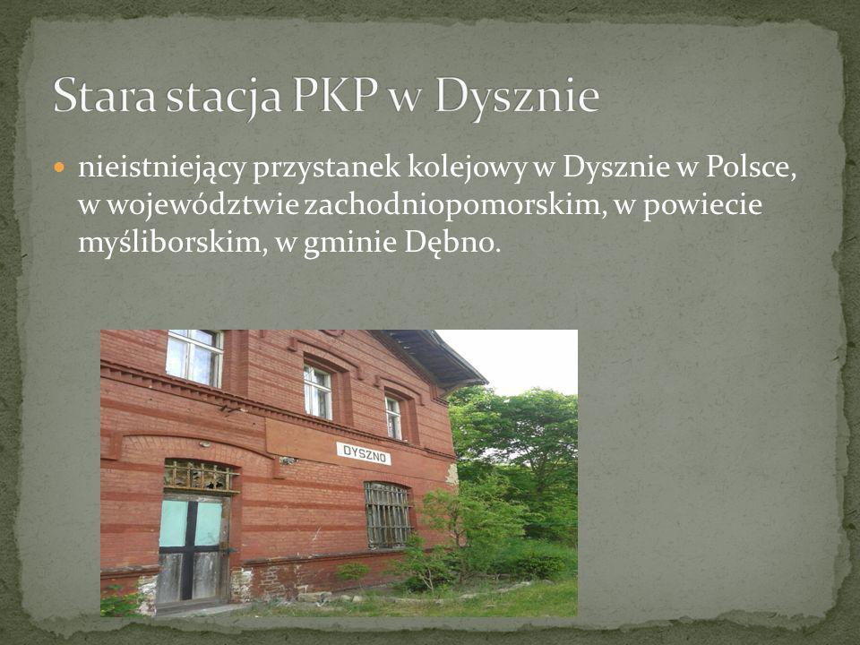 nieistniejący przystanek kolejowy w Dysznie w Polsce, w województwie zachodniopomorskim, w powiecie myśliborskim, w gminie Dębno.