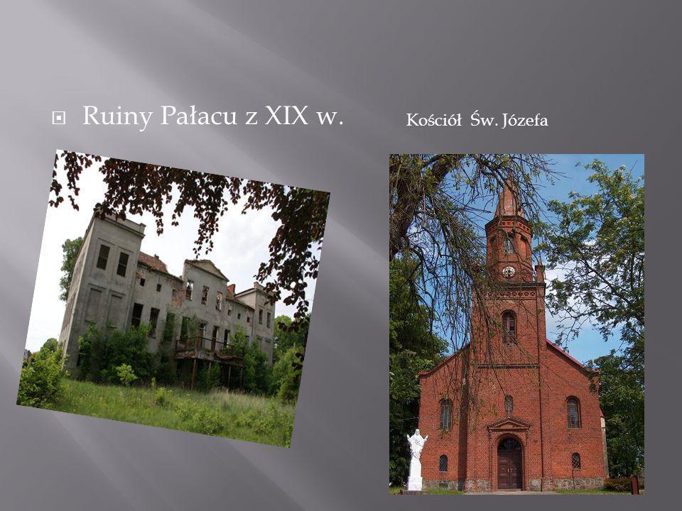 Ruiny Pałacu z XIX w. Kościół Św. Józefa