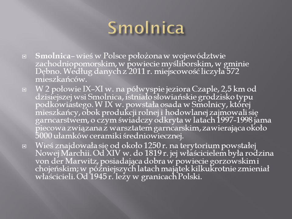Smolnica – wieś w Polsce położona w województwie zachodniopomorskim, w powiecie myśliborskim, w gminie Dębno. Według danych z 2011 r. miejscowość licz