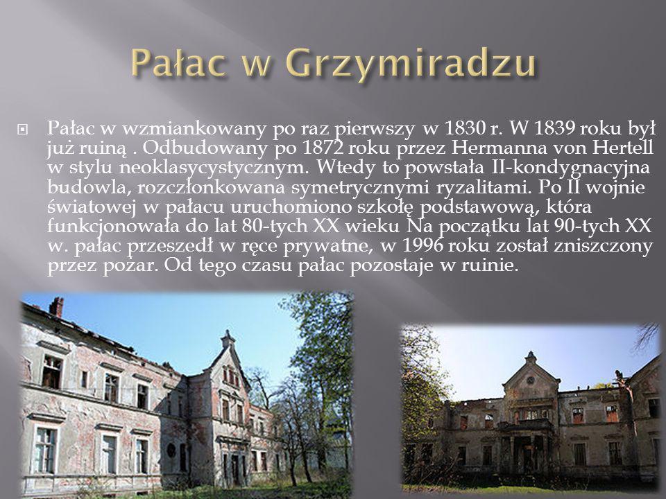 Pałac w wzmiankowany po raz pierwszy w 1830 r. W 1839 roku był już ruiną. Odbudowany po 1872 roku przez Hermanna von Hertell w stylu neoklasycystyczny