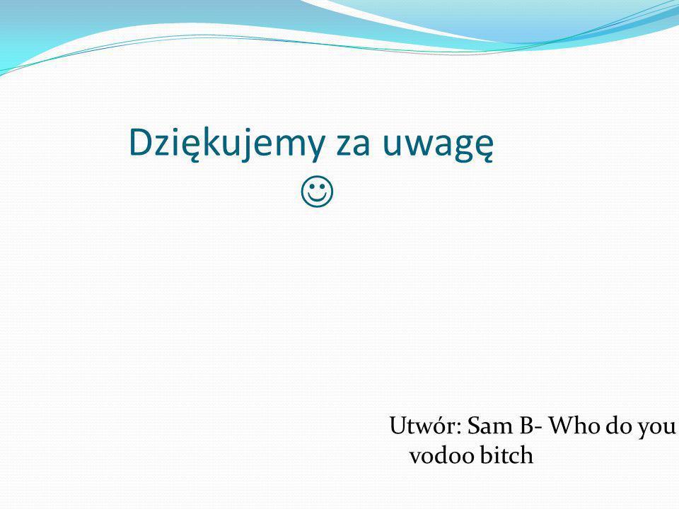 Dziękujemy za uwagę Utwór: Sam B- Who do you vodoo bitch