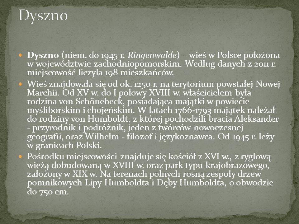 Dyszno (niem. do 1945 r. Ringenwalde) – wieś w Polsce położona w województwie zachodniopomorskim. Według danych z 2011 r. miejscowość liczyła 198 mies