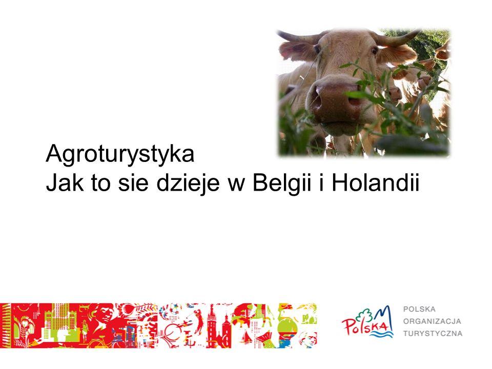 Plan prezentacji Rynek belgijski i holenderski – krótkie studium przypadku Trendy w sektorze agroturystycznym Struktura sektora agroturystycznego Promocja gospodarstw agroturystycznych Dobre przykłady