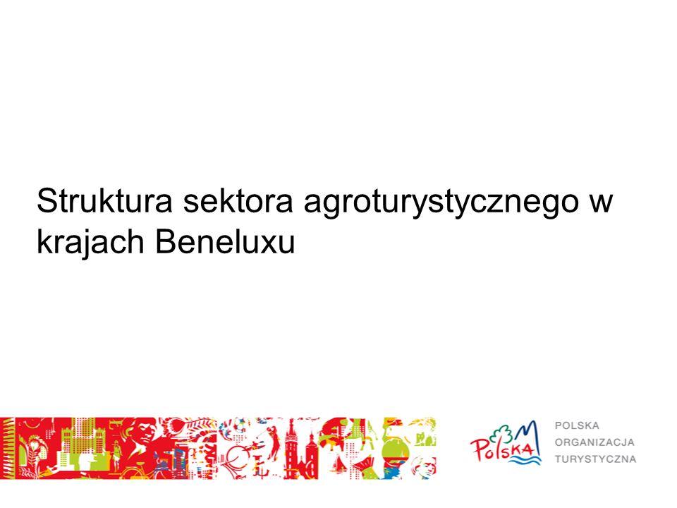 Struktura sektora agroturystycznego w krajach Beneluxu