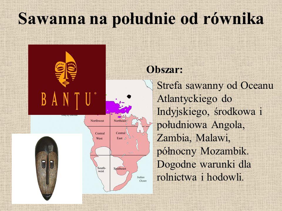 Sawanna na południe od równika Obszar: Strefa sawanny od Oceanu Atlantyckiego do Indyjskiego, środkowa i południowa Angola, Zambia, Malawi, północny M