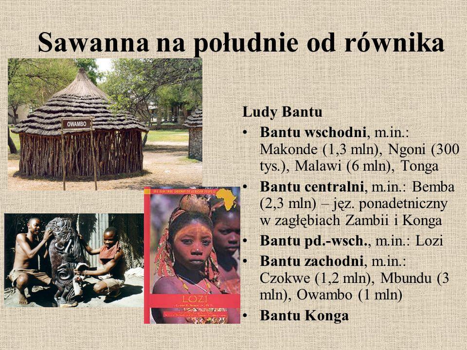 Sawanna na południe od równika Ludy Bantu Bantu wschodni, m.in.: Makonde (1,3 mln), Ngoni (300 tys.), Malawi (6 mln), Tonga Bantu centralni, m.in.: Be