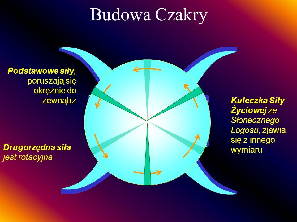 Czakra Korony (Sahasrâra) W centrum 12 Szprych, zewnętrznie 960 SzprychPobiera żółtą energię życiową z Czakry Serca, a fioletową od Czakry Gardła