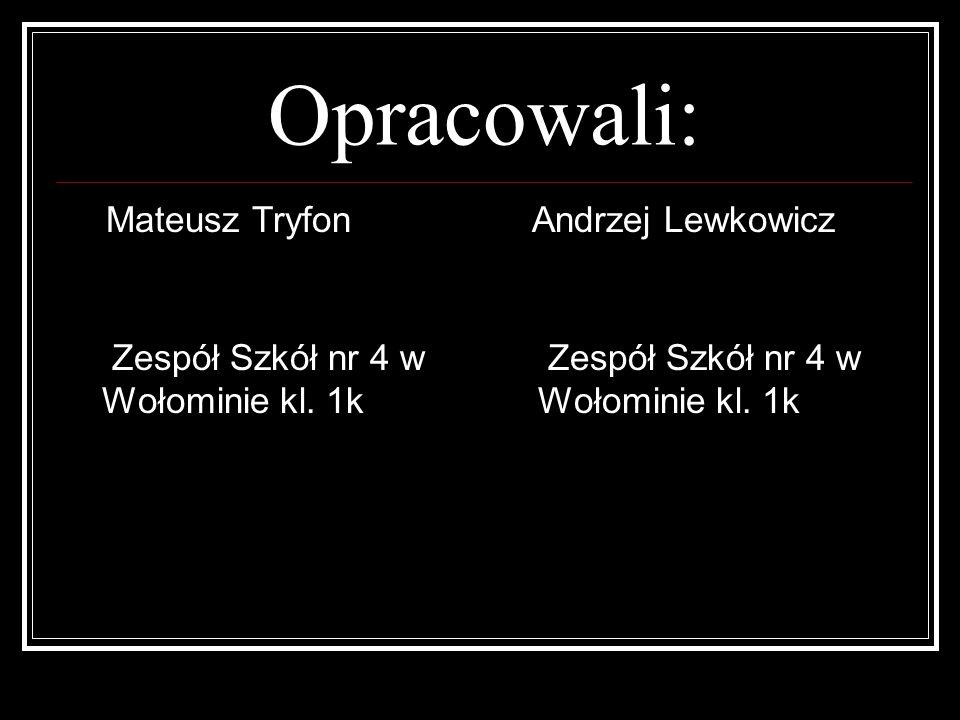 Opracowali: Mateusz Tryfon Zespół Szkół nr 4 w Wołominie kl. 1k Andrzej Lewkowicz Zespół Szkół nr 4 w Wołominie kl. 1k