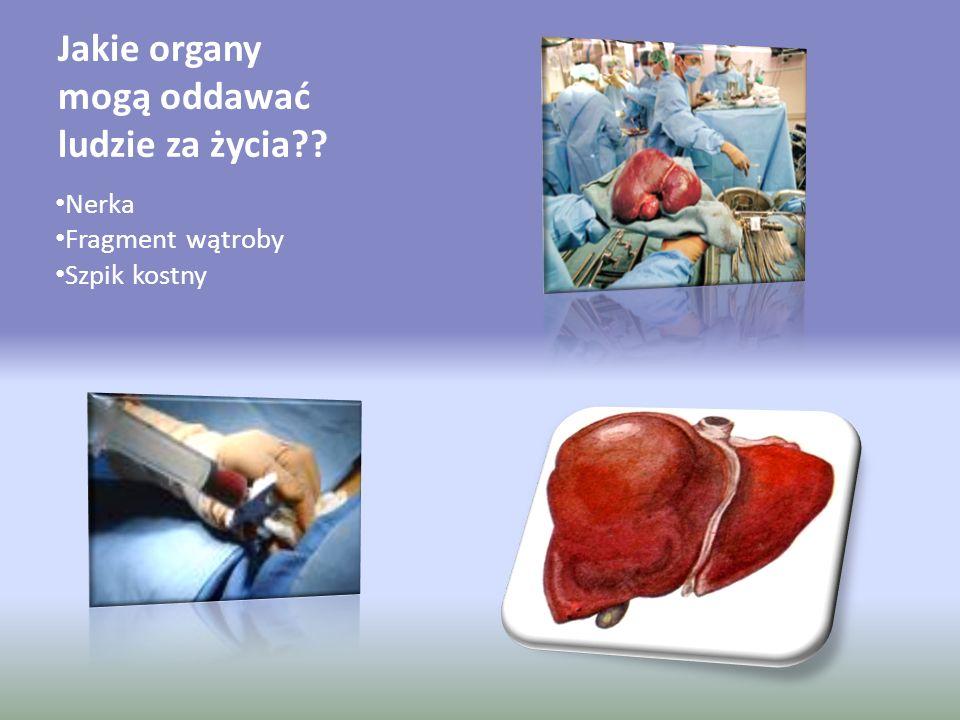 Jakie organy mogą oddawać ludzie za życia?? Nerka Fragment wątroby Szpik kostny