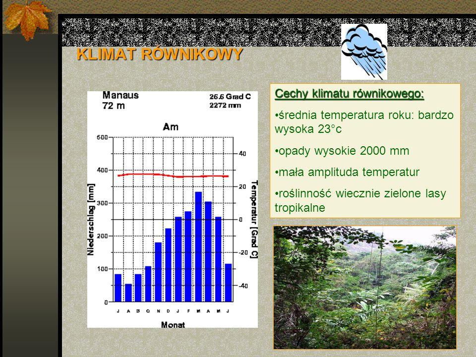 KLIMAT RÓWNIKOWY Cechy klimatu równikowego: średnia temperatura roku: bardzo wysoka 23°c opady wysokie 2000 mm mała amplituda temperatur roślinność wi