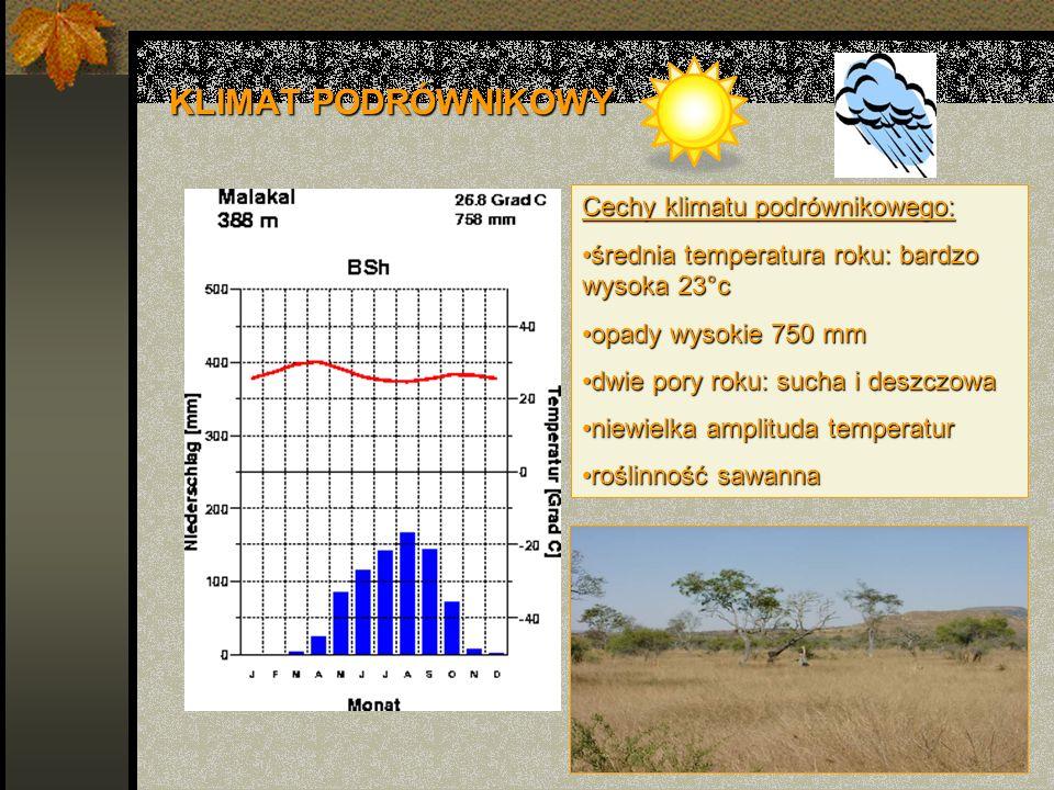 KLIMAT ZWROTNIKOWY Cechy klimatu zwrotnikowego: średnia temperatura roku: bardzo wysoka 25°cśrednia temperatura roku: bardzo wysoka 25°c opady bardzo niskie 0-200 mmopady bardzo niskie 0-200 mm pory roku: suchapory roku: sucha znaczna amplituda temperaturznaczna amplituda temperatur roślinność brak - pustyniaroślinność brak - pustynia