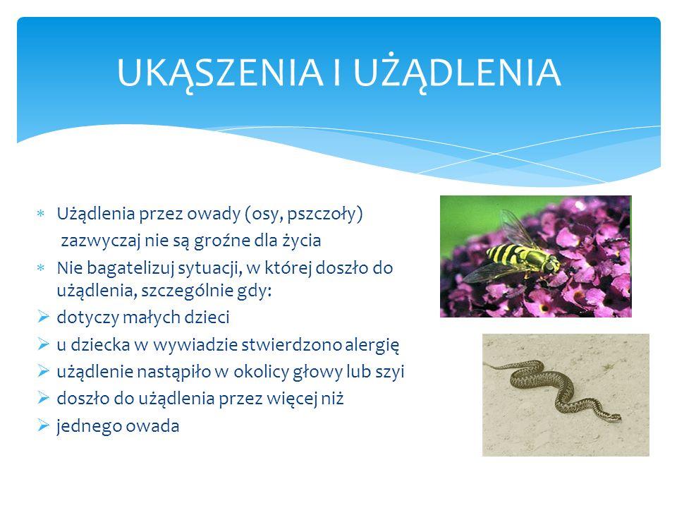 UKĄSZENIA I UŻĄDLENIA Użądlenia przez owady (osy, pszczoły) zazwyczaj nie są groźne dla życia Nie bagatelizuj sytuacji, w której doszło do użądlenia,