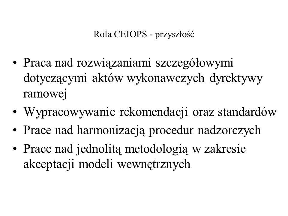 Rola CEIOPS - przyszłość Praca nad rozwiązaniami szczegółowymi dotyczącymi aktów wykonawczych dyrektywy ramowej Wypracowywanie rekomendacji oraz stand