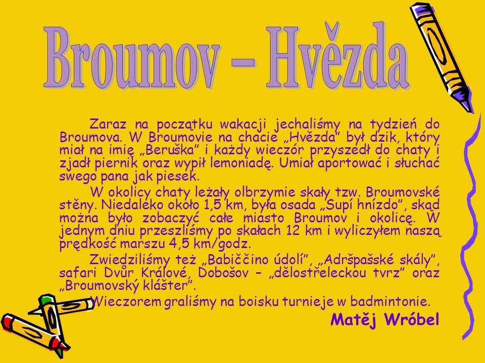 Zaraz na początku wakacji jechaliśmy na tydzień do Broumova. W Broumovie na chacie Hvězda był dzik, który miał na imię Beruška i każdy wieczór przysze