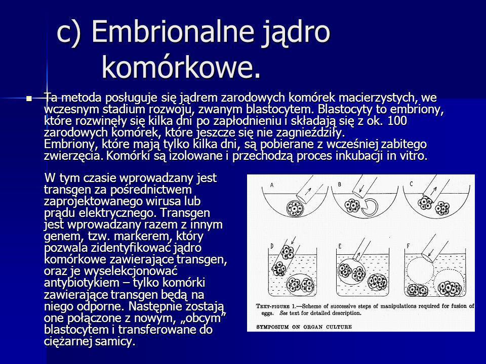 c) Embrionalne jądro komórkowe. Ta metoda posługuje się jądrem zarodowych komórek macierzystych, we wczesnym stadium rozwoju, zwanym blastocytem. Blas