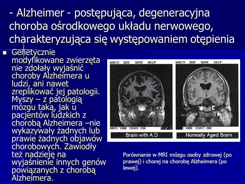 - Alzheimer - postępująca, degeneracyjna choroba ośrodkowego układu nerwowego, charakteryzująca się występowaniem otępienia Genetycznie modyfikowane z