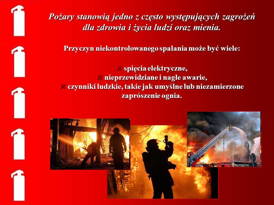 Pożary stanowią jedno z często występujących zagrożeń dla zdrowia i życia ludzi oraz mienia. Przyczyn niekontrolowanego spalania może być wiele: spięc