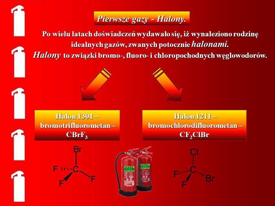 Działanie gaśnicze halonów, polega na przerwaniu reakcji spalania w wyniku dezaktywacji wolnych rodników w płomieniu i odznacza się bardzo wysoką skutecznością.