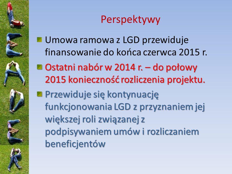 Perspektywy Umowa ramowa z LGD przewiduje finansowanie do końca czerwca 2015 r.