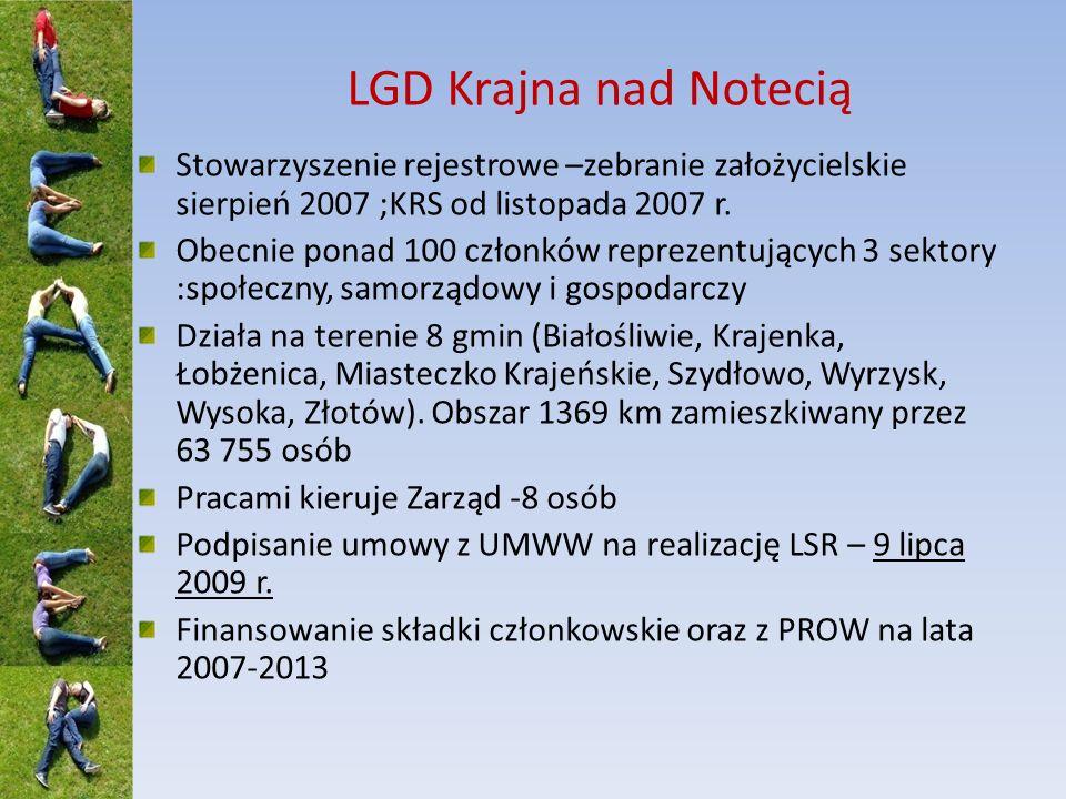 LGD powołana do realizacji działania 4.13.