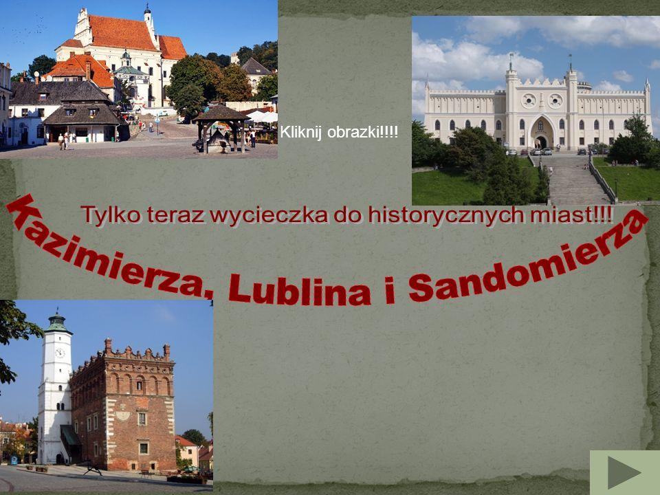 Miasto w województwie lubelskim, w powiecie puławskim, nad Wisłą, w Małopolskim Przełomie Wisły, w zachodniej części Płaskowyżu Nałęczowskiego.