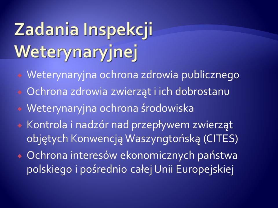 System wczesnego ostrzegania- oparty na systemach informatycznych i internetowych.