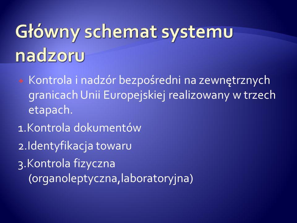 Kontrola i nadzór bezpośredni na zewnętrznych granicach Unii Europejskiej realizowany w trzech etapach. 1.Kontrola dokumentów 2.Identyfikacja towaru 3