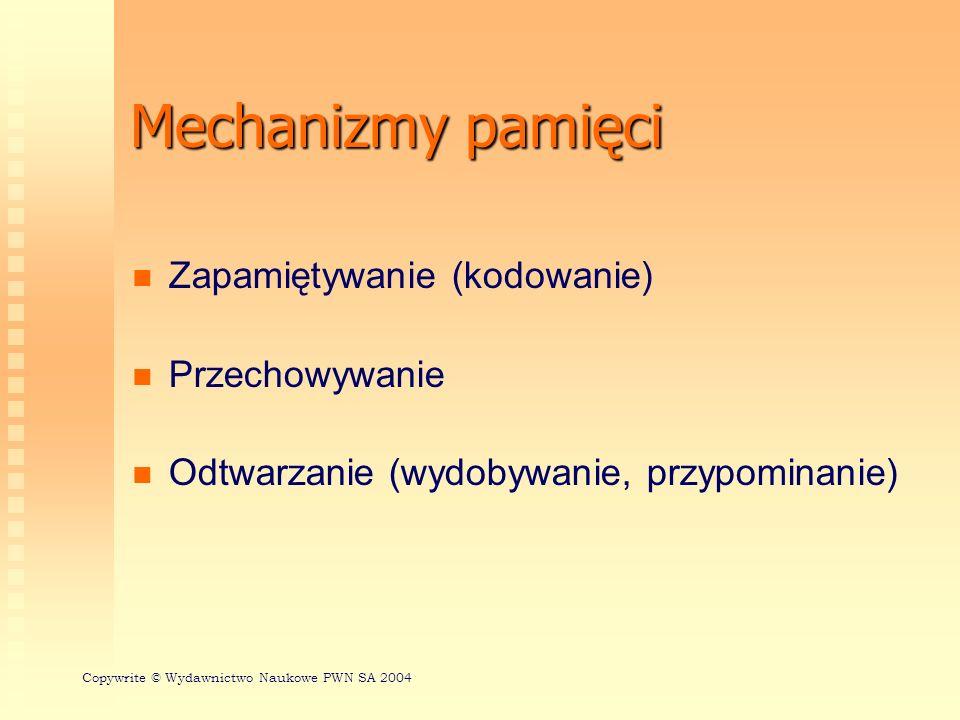 Mechanizmy pamięci Zapamiętywanie (kodowanie) Przechowywanie Odtwarzanie (wydobywanie, przypominanie) Copywrite © Wydawnictwo Naukowe PWN SA 2004