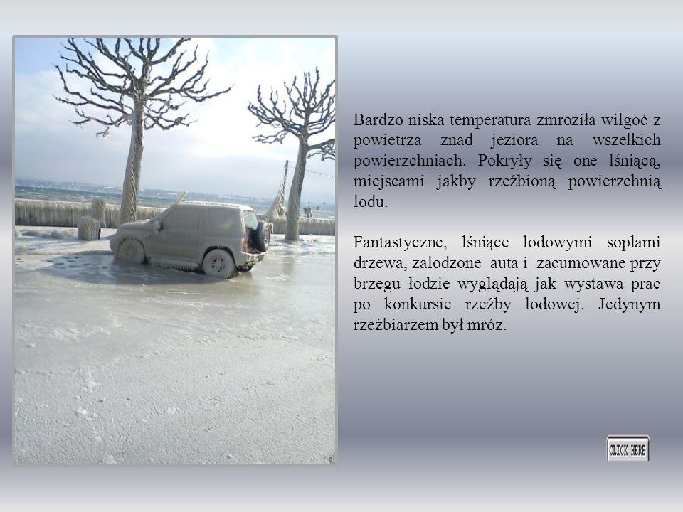 Ostra zima dotarła także nad jezioro Genewskie w Szwajcarii. Nie nęka ona jednak mieszkańców wielkimi utrudnieniami przyczynia się do nadania okolicy