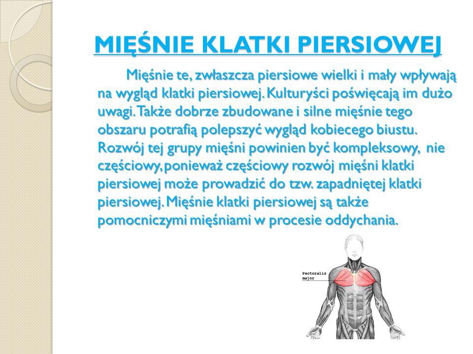 MIĘŚNIE KLATKI PIERSIOWEJ Mięśnie te, zwłaszcza piersiowe wielki i mały wpływają na wygląd klatki piersiowej. Kulturyści poświęcają im dużo uwagi. Tak