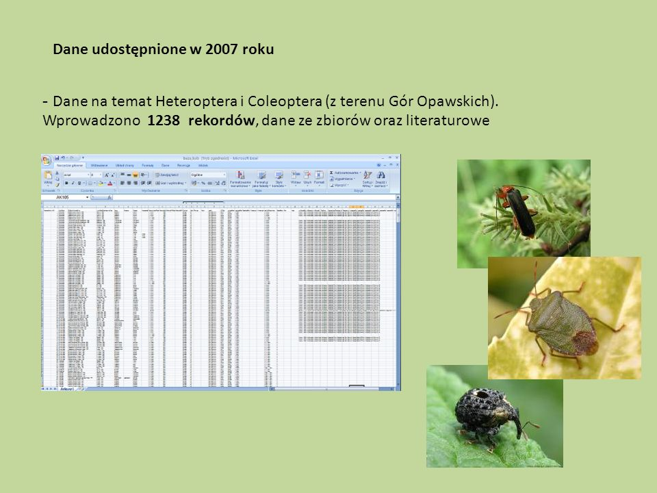Dane udostępnione w 2007 roku - Dane na temat Heteroptera i Coleoptera (z terenu Gór Opawskich).