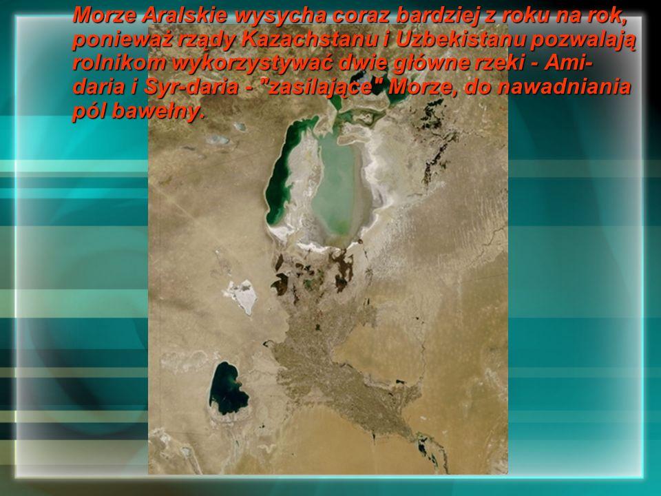 Morze Aralskie wysycha coraz bardziej z roku na rok, ponieważ rządy Kazachstanu i Uzbekistanu pozwalają rolnikom wykorzystywać dwie główne rzeki - Ami