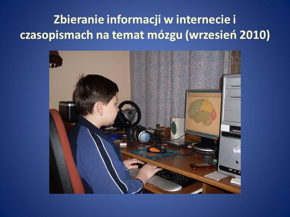 Zbieranie informacji w internecie i czasopismach na temat mózgu (wrzesień 2010)