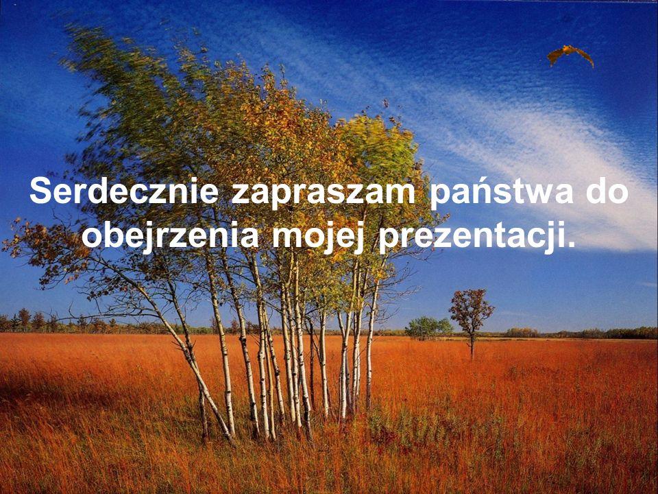 autor – Robert Kozakowski klasa 1 c Gimnazjum nr 2 im.