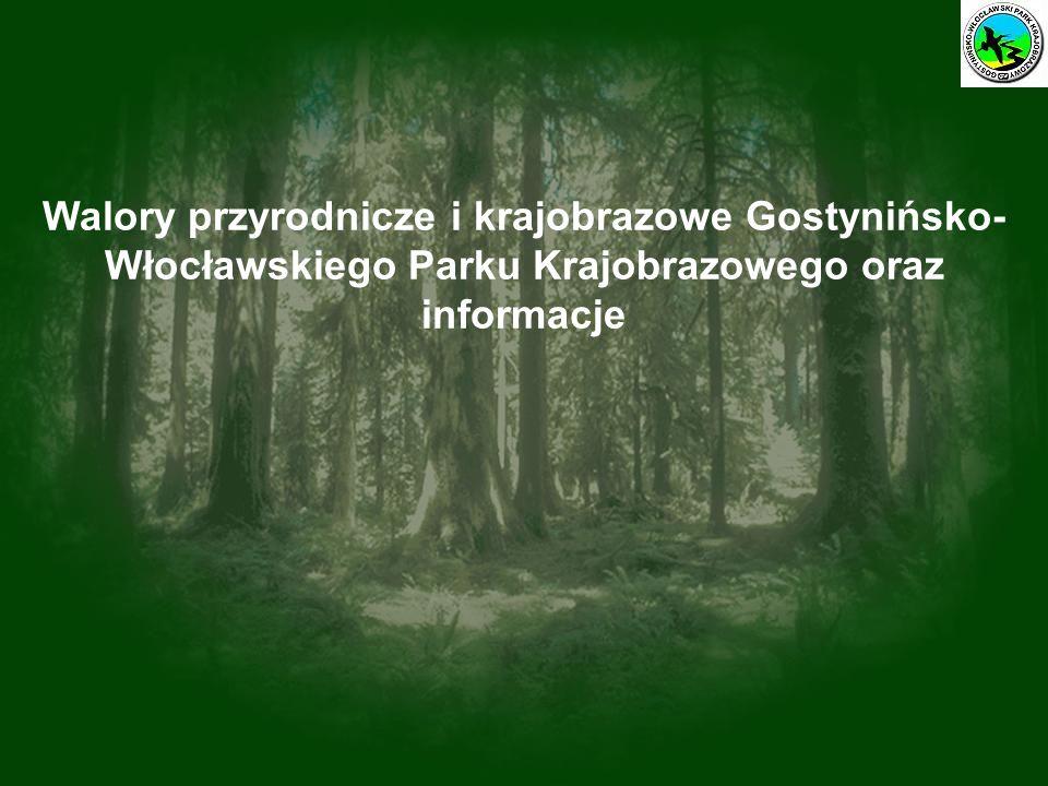 Walory przyrodnicze i krajobrazowe Gostynińsko- Włocławskiego Parku Krajobrazowego oraz informacje