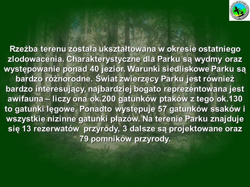 Pierwsze miejsce w konkursie informatyczno – ekologicznym p.t.