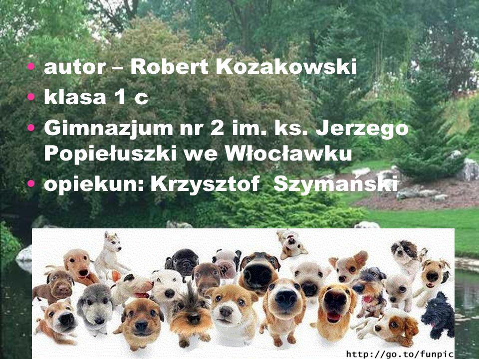 autor – Robert Kozakowski klasa 1 c Gimnazjum nr 2 im. ks. Jerzego Popiełuszki we Włocławku opiekun: Krzysztof Szymański