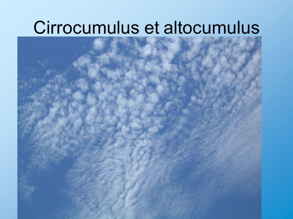 Cirrocumulus et altocumulus