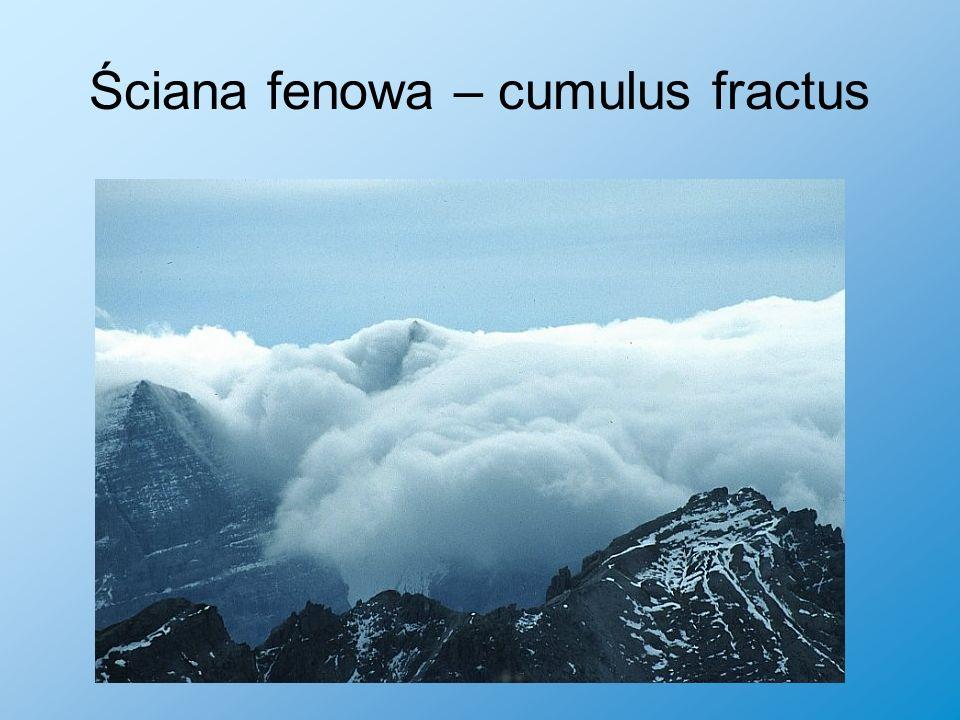 Ściana fenowa – cumulus fractus